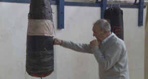 IVICA BOXER