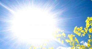 sunce-proljece