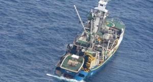 data-uzbuna-na-novom-zelandu-poslije-zemljotresa-u-tihom-okeanu-brod-zeland_5d05e7bcd1f68
